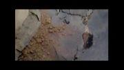 نشست وفروکش شدن زمین در یکی از کوچه های طبس