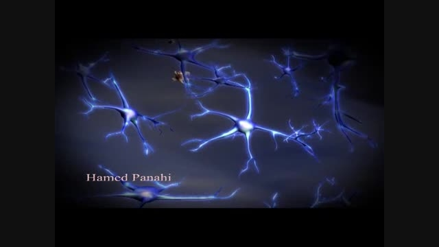انیمیشن رشته های عصبی