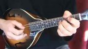 ماندولین _ از اقوام گیتار