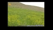 زیباترین تالاب ایران...