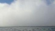 کلیپ فوق العاده زیبای مه روی دریا