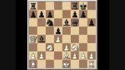 مسابقه ای که 39 سال پیش، قهرمان شطرنج ایران را مشخص کرد