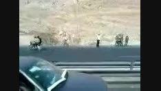 تصادف مرگبار اتوبوس دانشجویان در جاده شیراز