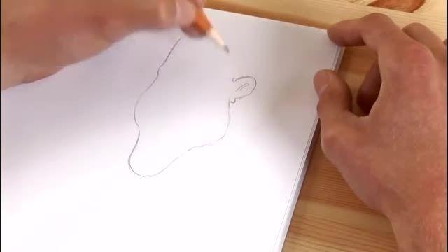 آموزش طراحی کاریکاتور 28 (طراحی کاریکاتور اوباما)6
