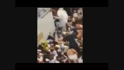 فیلم جدید از حاجیانی که در قفس گرفتار شدند