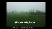 باران در شالیزارهای شلمان- استان گیلان