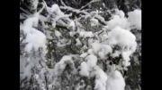 بارش برف در اصلاندوز مغان/ 21 آذر 1392