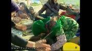 نوسال در شبکه استانی سمنان 2