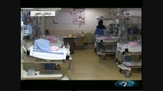 وزیر کار و موضوع 6 قلوهای مشهدی