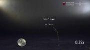 به تماشای پرواز کوچکترین روبات حشره جهان بنشینید