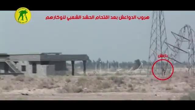 فرار دسته جمعی داعشی ها پس از حمله سپاه بدر