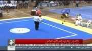 ووشو ساندای ایران با هفت مدال طلا نائب قهرمان جهان شد