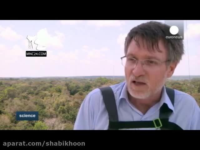 احداث دکل ۳۲۵ متری در جنگل آمازون