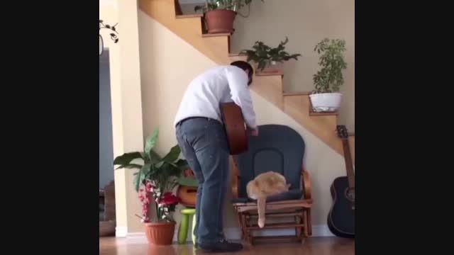 انتقام گرفتن گربه از صاحبش