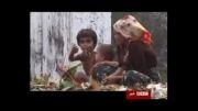 کشتار فجیع مسلمانان امری پیش پاافتاده برای بی بی سی!