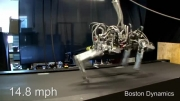 چیتا - سریع ترین روبات دنیا