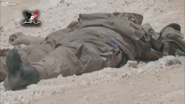 تلفات داعش-سوریه