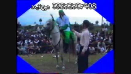 حادثه گازگرفتن اسب هار در تعزیه(حاج سقامجیدکیقبادی)