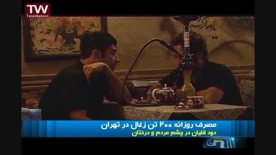 مصرف روزانه 200 تن چوب برای ذغال قلیان تهرانی ها