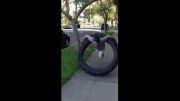 کلیپ دیدنی استفاده از لاستیک ماشین به جای حلقه کمر