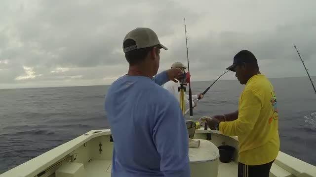 پریدن  بسیار جالب و دیدنی ماهی به داخل قایق ماهیگیری