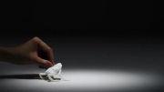 حیواناتی از جنس دستمال کاغذی