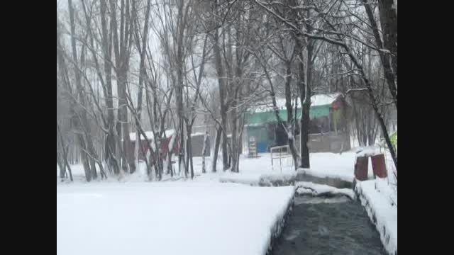 طبیعت زیبای برفی نیر