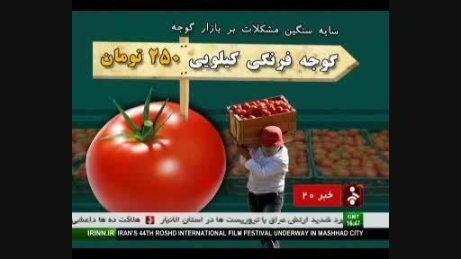 گوجه فرنگی کیلویی 250 تومان