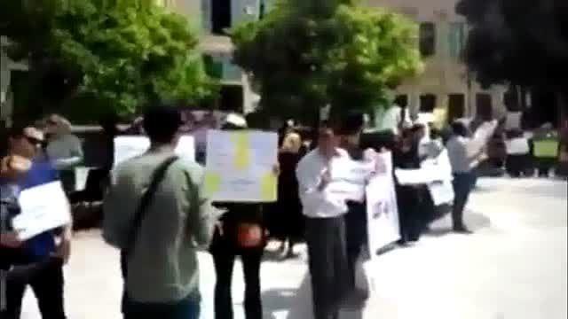 تجمع اعتراض به سگ کشی در مقابل شهرداری شیراز