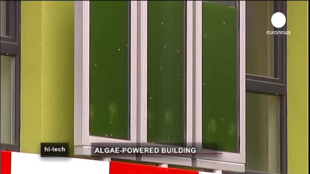 چگونه می توان با جلبک انرژی ساختمان را تامین کرد؟