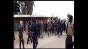 داعش صدها عضو یک عشیره عراقی را اعدام کرد