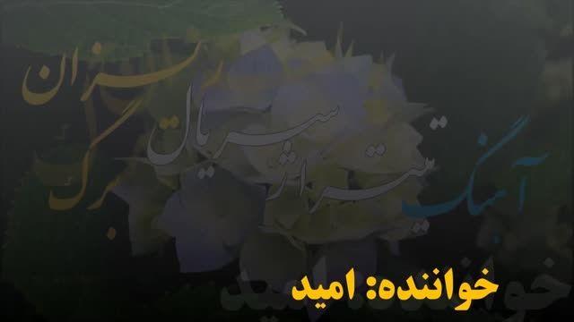 اهنگ سریال برگ ریزان از امید