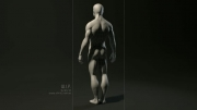 شبیه سازی سه بعد آناتومی بدن انسان