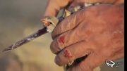 شکستن اسلحه شکاری توسط شکارچیان تحت تاثیر انجمن سبز چیا