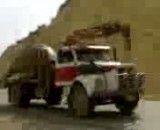 حمل بزرگ ترین لاک پشت جهان