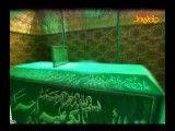 جواب به توهین شاهین نجفی
