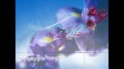 گویی به سادات همه باصلوات/تبریک که عمه جانتان میاید/