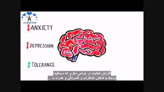 آیا مدیتیشن واقعا تاثیری روی مغز دارد؟