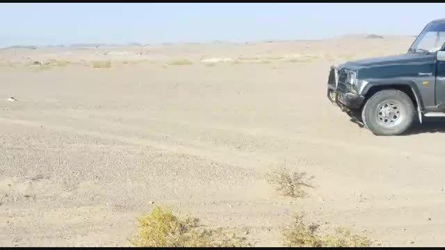 کلیپ تفریح عرب ها در بیابان+دیدنی