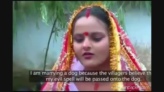 ازدواج دختر هندی با یک سگ