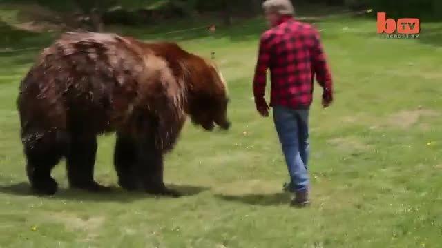 کشتی گرفتن خرس قهوه ای باانسان!!