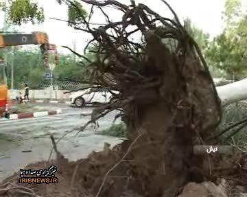 خسارت طوفان در کیش