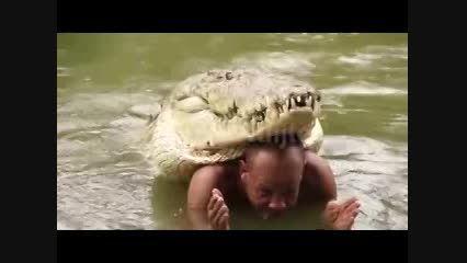 دوستی عجیب یک مرد با تمساح ۵ متری!