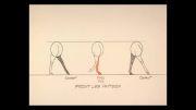 انیمیشن سازی با ویلیامز شناخت اصول راه رفتن و دویدن اسب 2-12