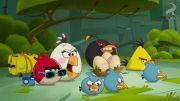 angry birds:وقت مرخصی