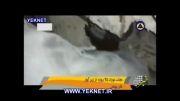 YEKNET.IR بیرون كشیدن نوزاد زنده 25 روزه از زیر آوار