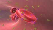 مفهومRh  مثبت یا منفی در گروه خونی چیست؟