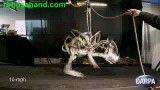 ربات یوزپلنگ -رکورد جدید سرعت