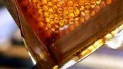 بسته بندی عسل ها و معجونهای عسلی در فروشگاه اینترنتی ست