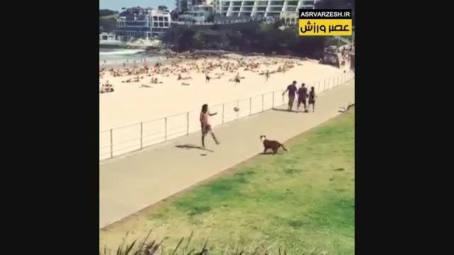 توپ بازی با سگ کنار ساحل